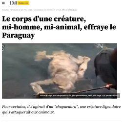 Le corps d'une créature, mi-homme, mi-animal, effraye le Paraguay - 12 novembre 2015
