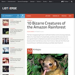 10 Bizarre Creatures of the Amazon Rainforest