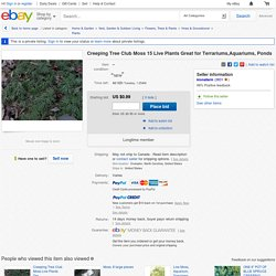 Creeping Tree Club Moss 15 Live Plants Great for Terrariums Aquariums Ponds