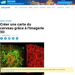 Créer une carte du cerveau grâce à l'imagerie 3D