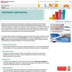 Creixement Empresarial