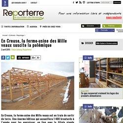 En Creuse, la ferme-usine des Mille veaux suscite la polémique
