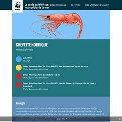 Le guide du WWF sur les produits de la mer
