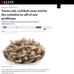 Turns out, crickets may not be the solution to all of our problems