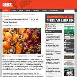 Crime environnemental : sur la piste de l'huile de palme