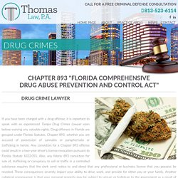 Tampa Drug Possession Lawyer-thomaslawtampa.com