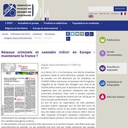 Réseaux criminels et cannabis indoor en Europe : maintenant la France ? - Numéro 1 - mai 2011