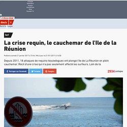 Surf - La crise requin, le cauchemar de l'Ile de la Réunion