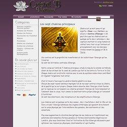 CRISTAL B NATURE - Les 7 chakras, leurs propriétés, leurs liens avec les pierres