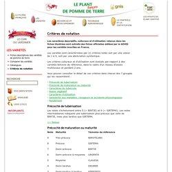 Critères de notation des variétés de pomme de terre