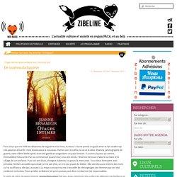 [blog] Zibeline (critique positive)