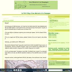 Un sac au crochet - Le Petit Blog d'Une Mercerie à la Campagne