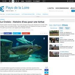 Une visite à l'Océarium du Croisic