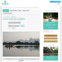 Croisière unique dans le Pantanal