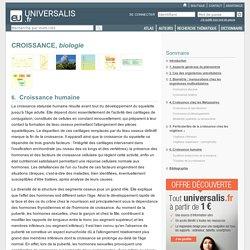 CROISSANCE, biologie, Croissance humaine