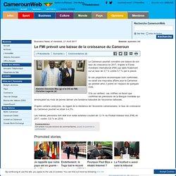 Le FMI prévoit une baisse de la croissance du Cameroun