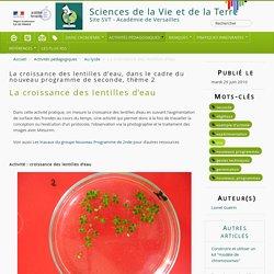 La croissance des lentilles d'eau - Sciences de la Vie et de la Terre