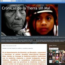 Crónicas de la Tierra sin Mal : Neuquén: el primer hospital con médicos y curanderos mapuches