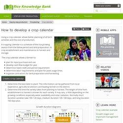 Crop calendar - IRRI Rice Knowledge Bank