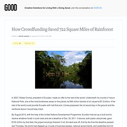How Crowdfunding Saved 722 Square Miles of Rainforest - Environment