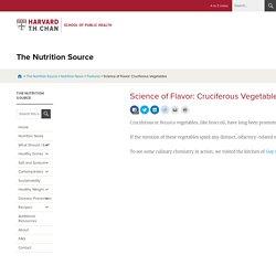 Science of Flavor: Cruciferous Vegetables