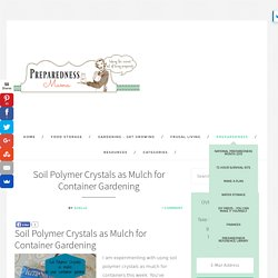 Soil Polymer Crystals as Mulch for Container Gardening - Garden Primer Series