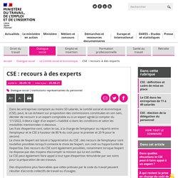 CSE : recours à des experts