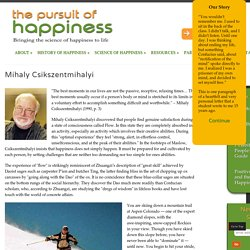 Csikszentmihalyi and Happiness