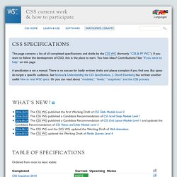 CSS current work & how to participate