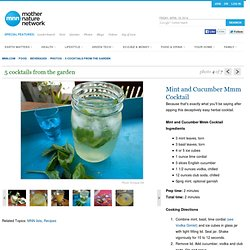 Recipe: Mint and Cucumber Mmm Cocktail