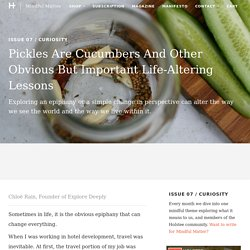 Pickles Are Cucumbers And Other Obvious But Important Life-Altering Le