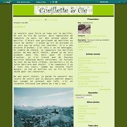 Cueillette & Cie