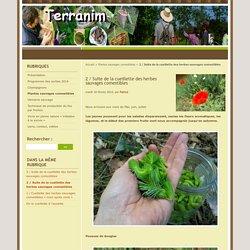 Revue de plantes Mai, juin, juillet