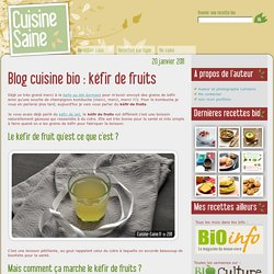 Blog cuisine bio : kéfir de fruits