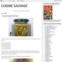 Sirop pearltrees - Cuisine sauvage couplan ...