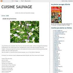 salade de primevères