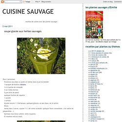 soupe glacée aux herbes sauvages