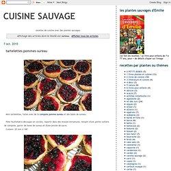 cuisine sauvage: sureau