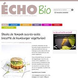 cuisiner rapide et sain, vite un hamburger bio !