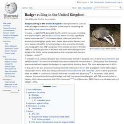 WIKIPEDIA - Badger culling in the United Kingdom.