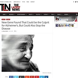 New Gene Found That Could be the Culprit for Alzheimer's, But Could Also Stop the Disease - The Latest News