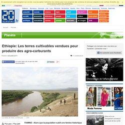 Les terres cultivables d'Ethiopie vendues pour produire des agro carburants