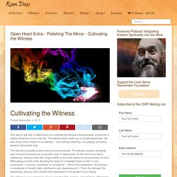 Cultivating the Witness