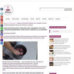 CESSEZ D'ACHETER DES TOMATES! VOICI COMMENT CULTIVER UN APPROVISIONNEMENT SANS FIN DE TOMATES, À LA MAISON! - Top Astuces
