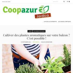 Cultiver des plantes aromatiques sur votre balcon c'est possible !