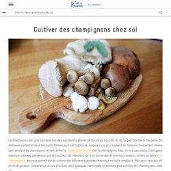 Cultiver des champignons chez soi - Le magazine de Prêt à Pousser