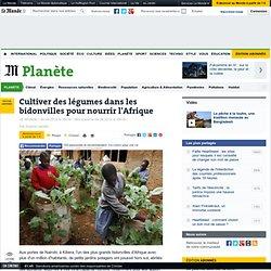 Cultiver des légumes dans les bidonvilles pour nourrir l'Afrique
