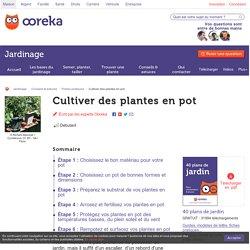 Cultiver des plantes en pot - Jardinage