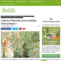 Cultivez l'Absinthe pour protéger votre potager