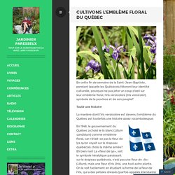 Cultivons l'emblème floral du Québec